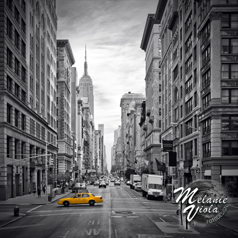 LINK - OhMyPrints Onlineshop - NEW YORK CITY 5th Avenue