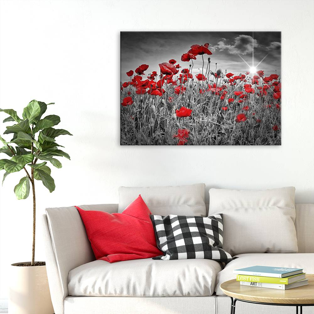 """Idyllisches Mohnblumenfeld 